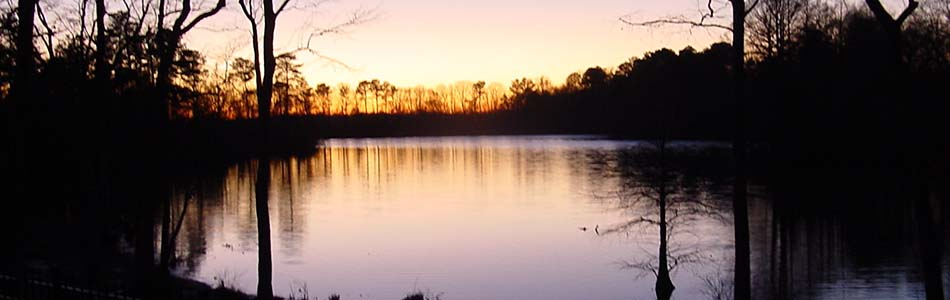 Evening Sunset on Chipmans Pond